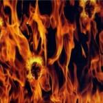 Flames w / Skulls